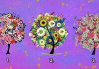 Vēlies uzzināt, kas tevi sagaida vasarā – izvēlies savu Laimes koku!